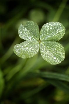 """March 17th 
