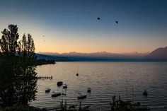 Having heard quite a bit about hotel Château d'Ouchy over the years, I'd always wanted to spend a night as a princess in that castle by Lake Geneva. Lake Geneva, Lausanne, Over The Years, Switzerland, Castle, Europe, Celestial, Sunset, Outdoor