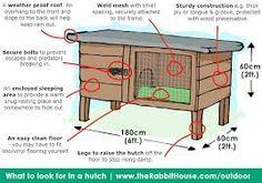 Image result for rabbit hutch