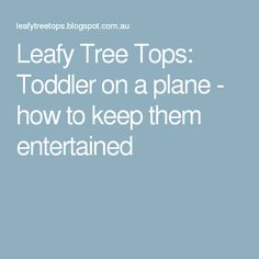 Leafy Tree Tops: Toddler on a plane - how to keep them entertained