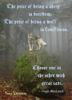 Sheep or Wolf? Wolf Love, Loneliness, Sheep, Peace, Words, Animals, Sayings, Quotes, Quotations