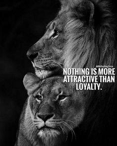 Lion and Lioness love Lioness Quotes, Lion King Quotes, Queen Quotes, Wisdom Quotes, True Quotes, Qoutes, Leo Quotes, Citation Lion, Miserable People
