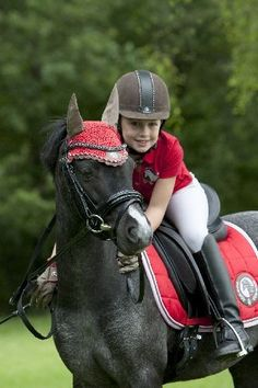 BR Oornetje 4 Ever Horses