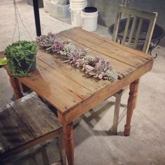 #diy #succulent table made out of a pallet.
