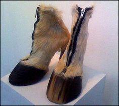 Ridiculous Horseshoes