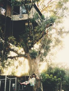 Greatest Tree House Ever
