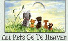 This Person Believes. All Pets Go To Heaven - Pet Memorial Grief (Chihuahua and other dogs at Rainbow Bridge) Pet Loss Grief, Loss Of Dog, All Dogs, I Love Dogs, Puppy Love, Pet Loss Quotes, Dog Quotes, Dog Sayings, Animal Quotes