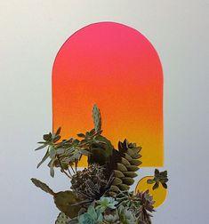 Stephen Eichhorn's Vibrant, Large-Scale Plant Collages | Hi-Fructose Magazine