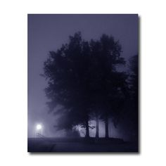Blue Dawn Mist photography silhouette trees surreal dawn 8 x 10 print violet blue misty dawn spooky surreal nature Christmas in July CIJ. $25.00, via Etsy.