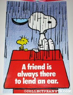 Snoopy & Woodstock in the rain