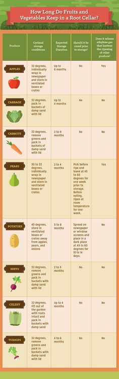 How to store crops in a root cellar