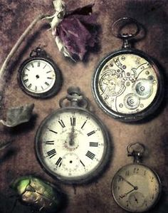 Pocket watches and flowers. Two of the same, counting down the days, second by second, petal by petal.