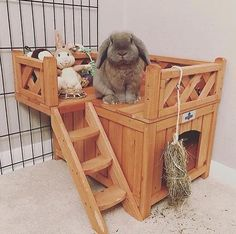 The Best Selling Wooden Fort for Pet Bunnies & Rabbits is at Bunny Supply Co! Featuring an adorable Rabbit Toys, Pet Rabbit, Rabbit Cage Diy, Diy Bunny Cage, Rabbit Pen, Bunny Supplies, Pet Supplies, Pet Bunny Rabbits, Best Rabbits For Pets