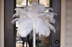 Got to find me some these feathers