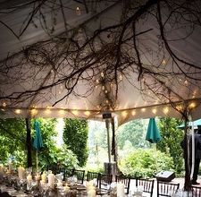 if we have a tent - branches in the tent, round lights on the edges, wood chairs, floral arrangements