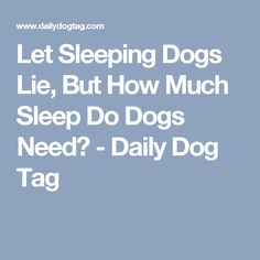 let sleeping dogs lie but how much sleep do dogs need