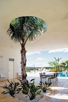 A fun and beautiful detail on the covered terrace. A palm tree sticks it top through a hole in the ceiling. The small dining table with chairs is from El Corte Ingles.