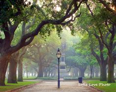 Small park at end of old Charleston - Battery Park