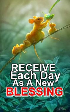 Receive each day as a new blessing -  Kofax Express is still 10% off Let us teach you about the simplicity of going green, the benefits for your business and the great returns many of our clients have already received and experienced   info@paperlessperformance.co.za or 010 590 8972..   Give your business the software edge