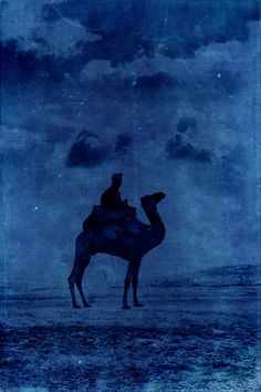 12 x 18 Vintage photograph of Bedouin and camel in by UncleBuddha, $26.95