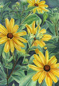 Black eyed susan painting of flowers 5x7 print by Earthspalette
