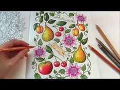 Kitties In Fruits Dreamland Part Sharing How I Color With Prismacolor Premier Colored Pencils Lets Frame To Make Our Kitchen Wall Looks
