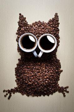 The rare coffee owl by Ilya Smirnov