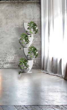 Ecovo #white #Ronda #design #vertical #garden #plants