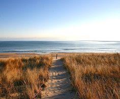Beach pathway. Amagansett, NY, United States. #Beach #Pathway #Amagansett