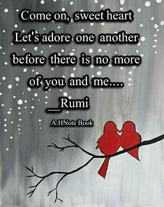 Rumi ღ