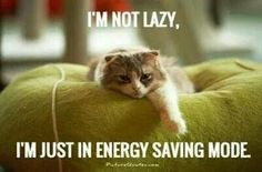 Chronic Fatigue  I give whatever energy I might have to who I care for <3 when I can.  Priority.
