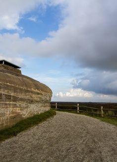 De lucht afspeuren voor roofvogels en Zwarte Ooievaars vanaf de bunker!