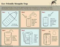 Funny pictures about How to easily build a mosquito trap. Oh, and cool pics about How to easily build a mosquito trap. Also, How to easily build a mosquito trap. Bug Trap, Dubai, Mosquito Trap, Anti Mosquito, Mosquito Control, Insecticide, Warm Down, Pest Control, Camping Hacks
