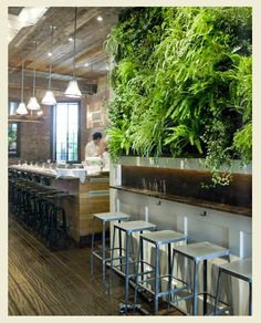Plants on a wall… for the kitchen? {via est magazine}