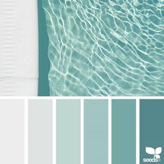 today's inspiration image for { color swim } is by @jenelle.botts ... thank you, Jenelle, for sharing your wonderful photo in #SeedsColor !