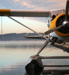 Fly up on a Kenmore Air seaplane!  San Juan Safaris Whale Watch & Wildlife Tours  www.sanjuansafaris.com