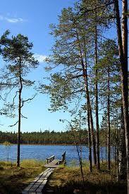 Lake Kotajarvi, Finland