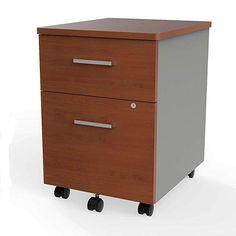 Symple Stuff Lampert Mobile Vertical Filing Cabinet Color: W