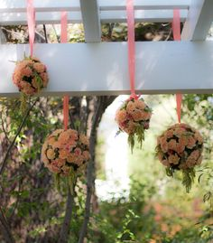 Pomanders - in red and white. These would be pretty hanging in the tent or smaller versions for lanterns along the aisle