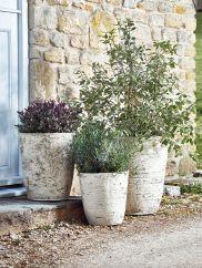 Three Birch Effect Planters