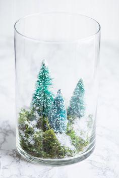 DIY Terrarium Winter Scene