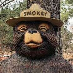 Happy 75th Birthday, Us Forest Service, Gate Way, Wildland Fire, Smokey The Bears, Save Nature, Those Were The Days, Walk In The Woods, Warrior Princess