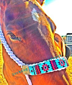 Custom beaded mule tape halters Check out my FB page  Bucking Horse Beadwork