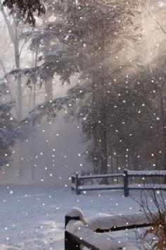 Snowy Park.