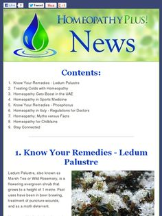 Homeopathy Plus Newsletter: 24.1.13