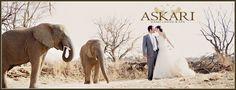 Askari Game Lodge & Spa - Magaliesberg, Gauteng Wedding Venues