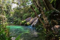 Cuba près de Cienfuegos - Mysterious small lake Photo by Tomas M. — National Geographic Your Shot - A segment of the Parque Natural Topes de Collantes. A system of rivers, lakes and waterfalls El Nicho, close to Cienfuegos. This one had for me a mysterious atmosphere