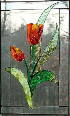 Tulips- I would love to have windows around my house with different flowers in them. just like this. :)