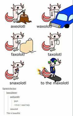 Axolotl puns