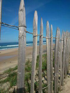 lacation biscarrosse plage (200 m de la plage) locations de
